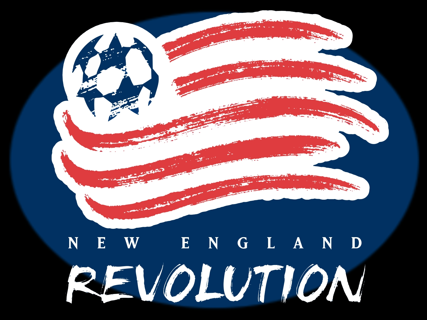 Image result for new england revolution