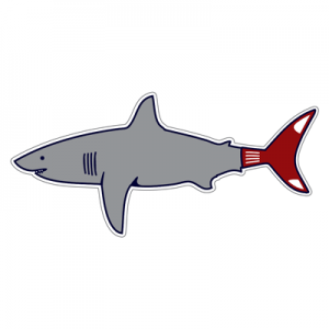 boston-shark-sticker-2