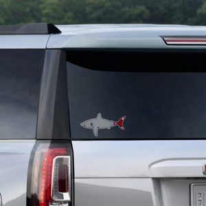 boston-shark-sticker-8