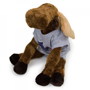 fan-moose-stuffed-animal-and-shirt-12