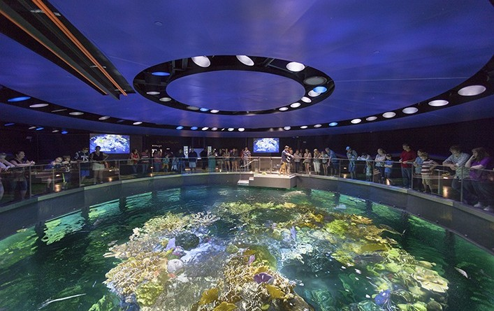 Image Result For New England Aquarium