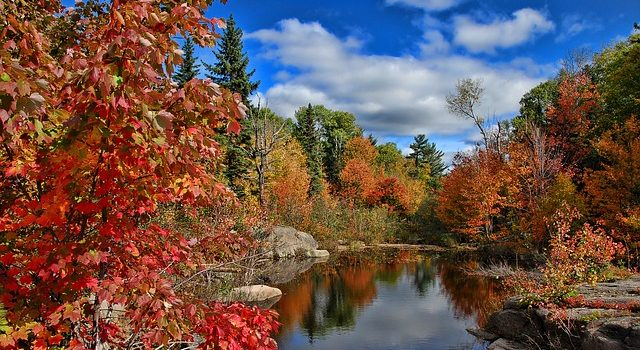 Expert predicts spectacular fall foliage for new england for Paesaggi autunnali per desktop